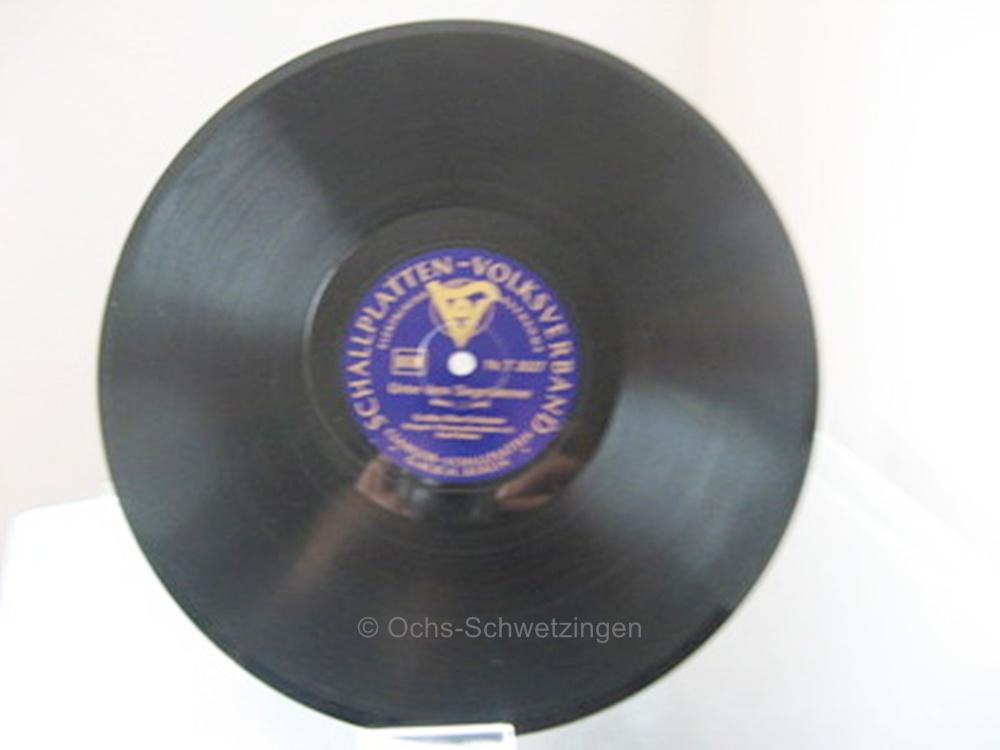 Handgemalt Erste Weltkrieg Marine Fein Reservistika Teller 250 Mm Durchmesser GroßEs Sortiment